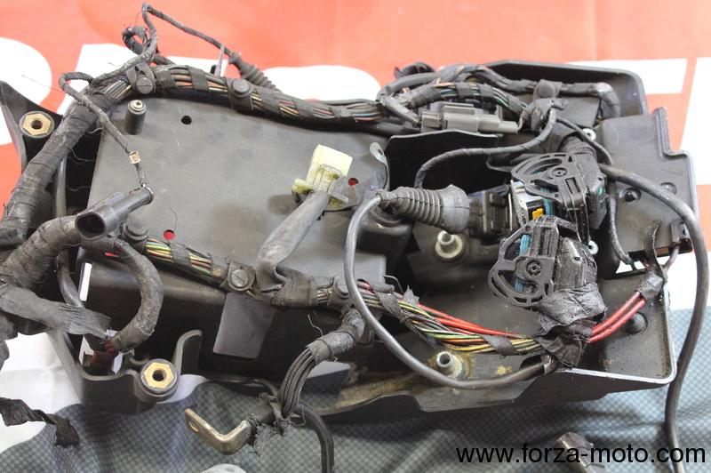 ducati main wiring loom harness for 999s 2003 2004 82914191a rh forza moto com ducati 748 wiring loom Spark Plug Wire Looms