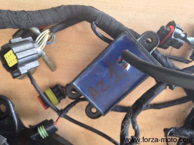 Remarkable Ducati Wiring Harness Dashboard Ecu Dtc Shifter Sp Electronics Wiring 101 Jonihateforg